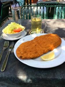Schnitzel with Dreaded Salad.