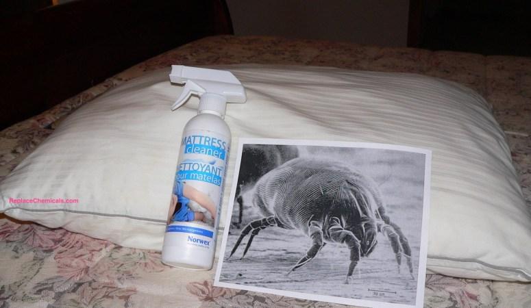 Pee smell vs. Norwex Mattress Cleaner = No Match!