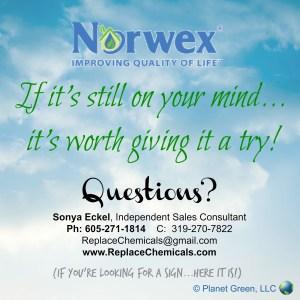 Should I become a Norwex Rep?