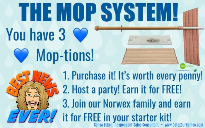 Norwex Mop System Review and How to use the Norwex Mop (UPDATED!)