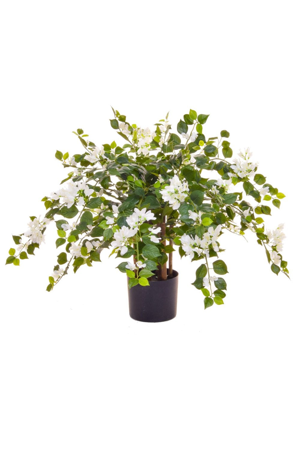 Artificial Bougainvillea Plant The Artificial Plants Shop