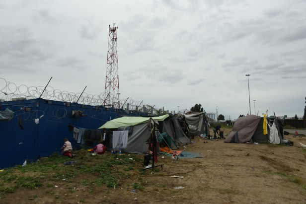 Face aux barbelés de la frontière hongroise, le campement de Kelebia.