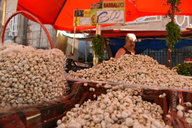 Étal de Babalucci, les petits escargots à bouillir