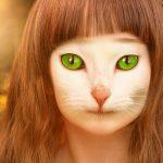 AI・人工知能が顔を分析『どうぶつ顔診断』…あなたの顔は何動物?