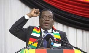 Emmerson Mnangagwa wins in zimbabwe