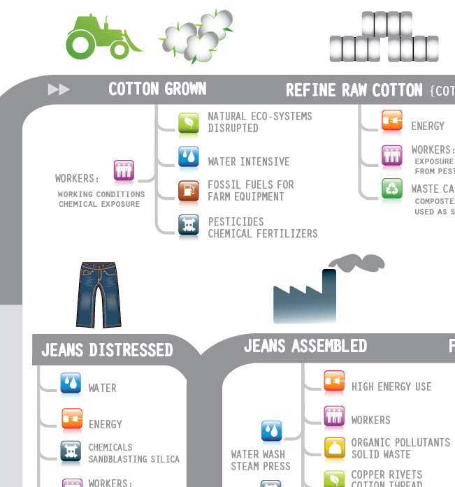Supply Chain of Jeans Infographic