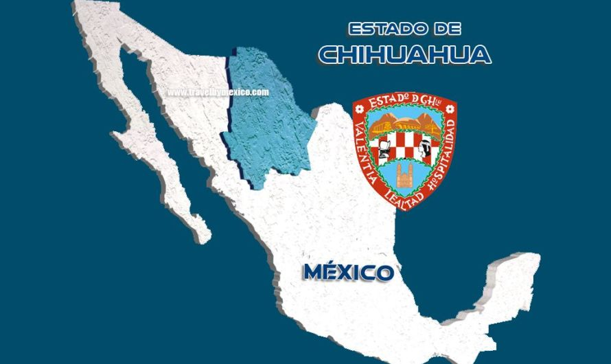 Chihuahua… ¿Sabías que?