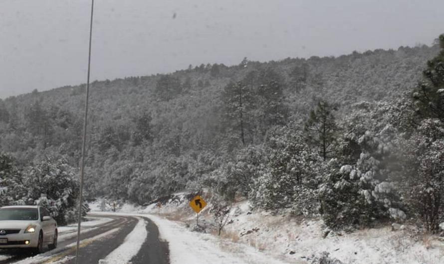 Chihuahua: 30 municipios con nieve