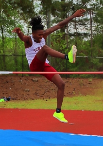 Towers Daeshaun Logan won the high jump gold at the Region 6-2A Track and Field Championships. (Photo by Mark Brock)