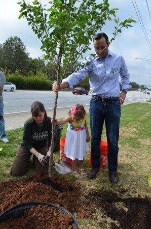 Susan Pierce Cunningham of Trees Atlanta, left, 3-year-old Ella Clockadale, at center, and her dad J.D. Clockadale, standing, help plant a cherry tree at Brookhaven's new city offices on Peachtree Street. City officials planted three cherry trees to celebrate national Arbor Day.