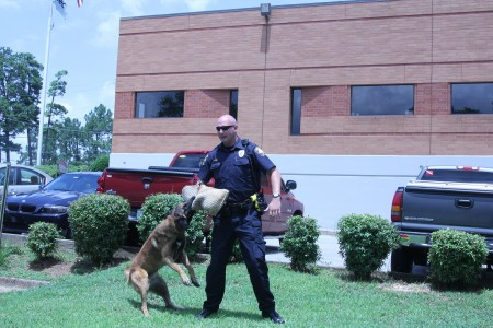 "Dano, the Brookhaven Police Department's newest police dog, demonstrates ""controlled apprehension"" with partner Officer John Ritch."
