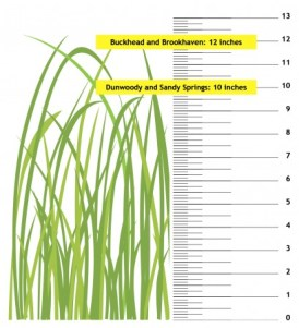 grass-revised