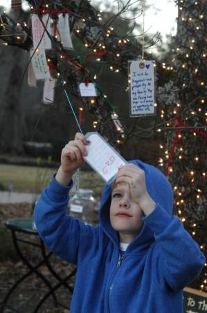 Mason Marks, who's 5, examines a wish recorded on Debra Minkley's Wishing Tree,