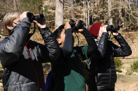 """Dunwoody Nature Center; Saturday February 13, 2016 11:00am. The Boy Scouts of America Dunwoody Troops #232, and #477 earn their """"Bird Study"""" merit badge while participating in the Great Backyard Bird Count. The nineteenth year of the bird count which takes place early February. By counting birds and entering the numbers and species of birds we are collecting data for the Cornell University Lab of Ornathology to help study population, and migration patterns of birds. (ltor) Aaron Griffith (14yr) from Troop #477, Raza Zaidi (11yr) from Troup #477 [green shirt no jacket], and David Lord (13yr) from Troop #232 [maroon cap]."""