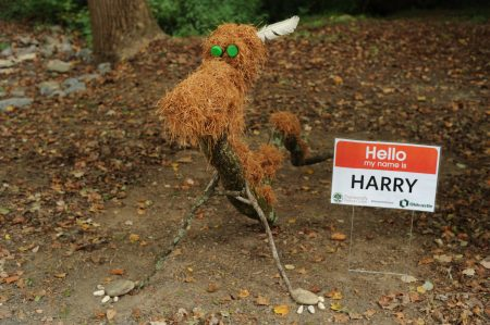 Harry, a creature made of pinestraw, is one of 20 pieces made by artist Salley McInerney using natural, found materials. (Photo Phil Mosier)