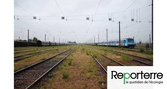 La loi SNCF affaiblira le chemin de fer, jugent les ONG écologistes