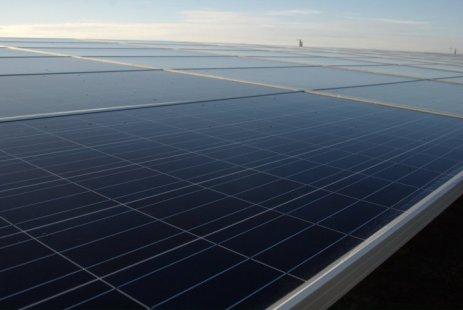 Un projet de parc solaire compte détruire mille hectares de forêt en Gironde