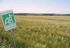 Le gouvernement réduit les aides à l'agriculture bio