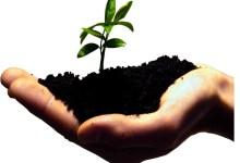 Photo of Sustentabilidade pede mudança