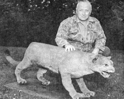 O biólogo Bruce Wright com o que um um Puma do Leste taxidermizado s believed to be the last eastern puma. The puma was trapped in Maine in 1938 by a Canadian national. The preserved specimen resides in the New Brunswick Museum.