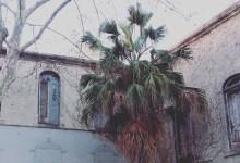 Photo of A casa sem janelas – parte I