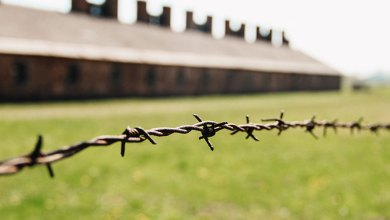 Photo of Auschwitz, nunca é tarde para recordar