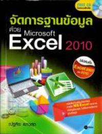 ManagingExcelWithDB2010.JPG