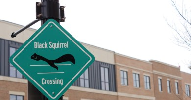 Photo of sign of black squirrel crossing