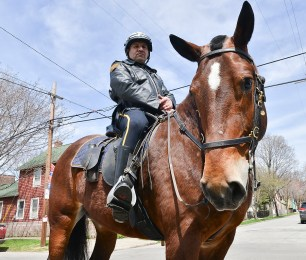 Const. Will Gandarilla, badge #1172, on Jack. The city has seven horses in the police department.