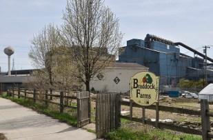 A community garden has sprung up near the steel mill.
