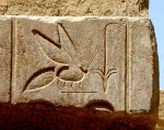 Abeille - Temple de Karnak - Egypte