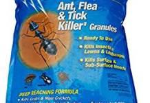 best ant killer for lawn