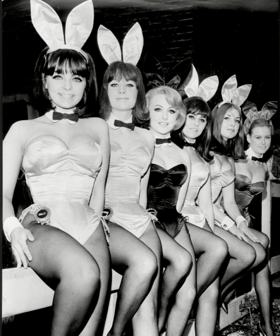 bunny17