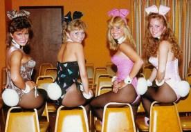 bunny30