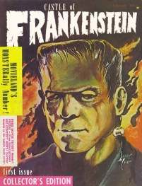 castle-of-frankenstein-1