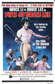 fists-of-bruce-lee