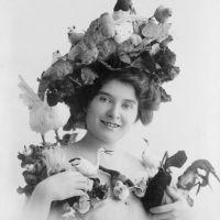 The Bizarre And Disturbing World Of Victorian Taxidermy Hats