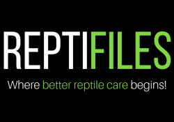 reptifiles logo featured image 2