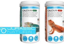 jurassic natural calcium product review - feature image
