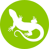 lizard care sheets icon