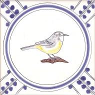 22 Grey Wagtail