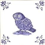22 tawny owl