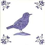 34 starling