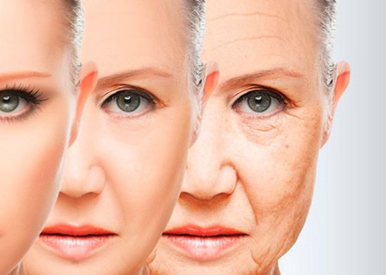 envejecer-ageing