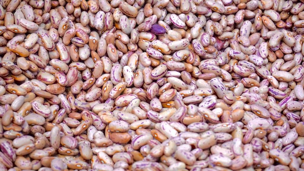 high quality protein: beans