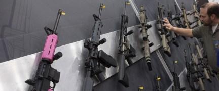 D.C. overturns gun restrictions