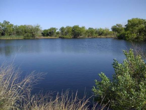 Texas Pond
