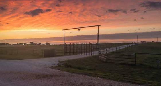 Pricing Land - Land Investor 2018