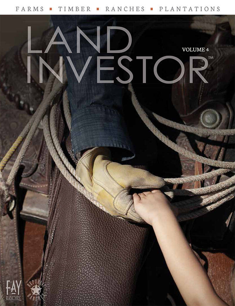 "NOW AVAILABLE – ""LAND INVESTOR"" MAGAZINE"