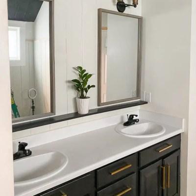 Master Bathroom Makeover Progress-One Room Challenge Week 3